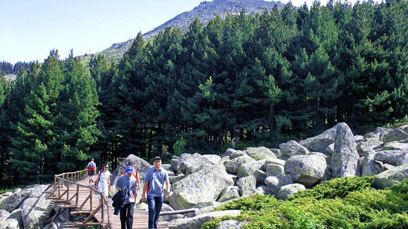 The rock river in Vitosha Mountain of Sofia